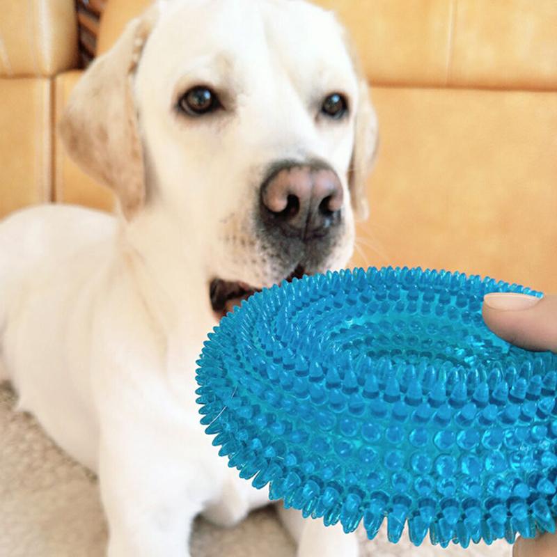 Juguete circular masticable para mascota 4