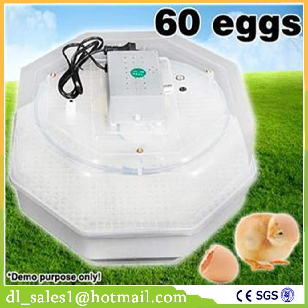 1 Piece Mini 60 Eggs In Incubator 220V Egg Incubator Chicken Duck Poultry Incubation Equipment brand new model chicken egg incubation capacity 96 eggs