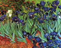 Irises Flowers Garden Vincent Van Gogh oil painting reproduction Artwork Pictures on Canvas Wall Art for Bedroom Home Decoration