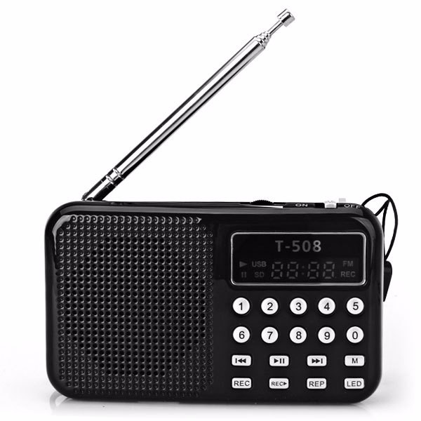 REDAMIGO Hot sale LCD Display Radio Internet Digital fm radio Micro SD / TF USB Disk mp3 radio dengan speaker RADT508