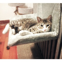 High Quality Cat Hammock Bed Puppy Cushion Warm Bed Cat Nest Cat Bed Sleeping Hammock Pet Bed