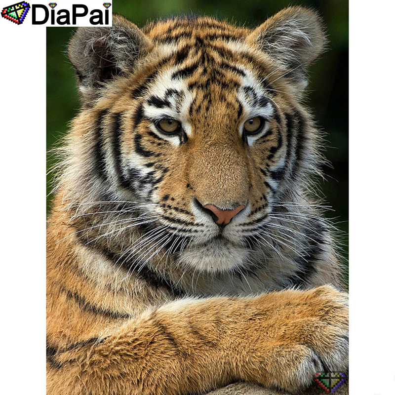 "DIAPAI 5D DIY Diamond Painting 100% Full Square/Round Drill ""Animal tiger"" Diamond Embroidery Cross Stitch 3D Decor A22802(China)"