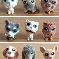 Cachorro de brinquedo de pelúcia boneca cão bonito do cão de veludo reunindo boneca ornamentos 5-6 criança brinquedos figura de ação