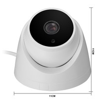 1MP 1 3MP 2MP HD Analog AHD Camera For Indoor Ceiling Instal Wtih High Quality Picture