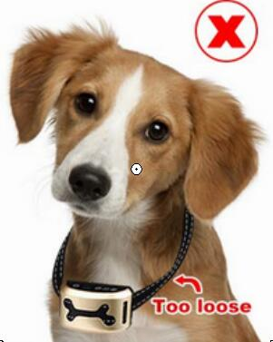 Anti Barking and Rechargeable Dog Shock Collar for Dog Training with Vibration and Shock Button 14