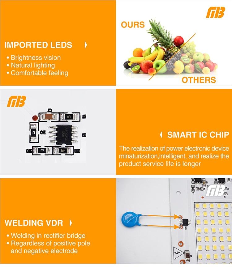 LED Lamp Chips_18