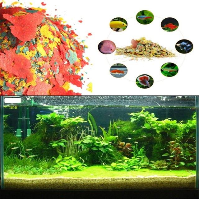 Aquatische Pet Sehr Nahrhaftes Fisch Feeder Farbe Verbesserung Der Lebensmittel Goldfisch Aquarium Tropische Fische Tanks Wachsen Schnelle Gesunde Liefert
