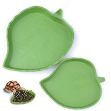 Misterolina Pet Tortoise Food Water Bowls For Reptiles Snakes Spiders Lizards Small Animal Feeding Supplies Accessories Supplies