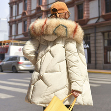 2019 New Women Winter Jacket with Colorful Fur Collar Plus Size Warm Womens Winter Coat Cotton Padded Slim Female Parkas Outwear стоимость
