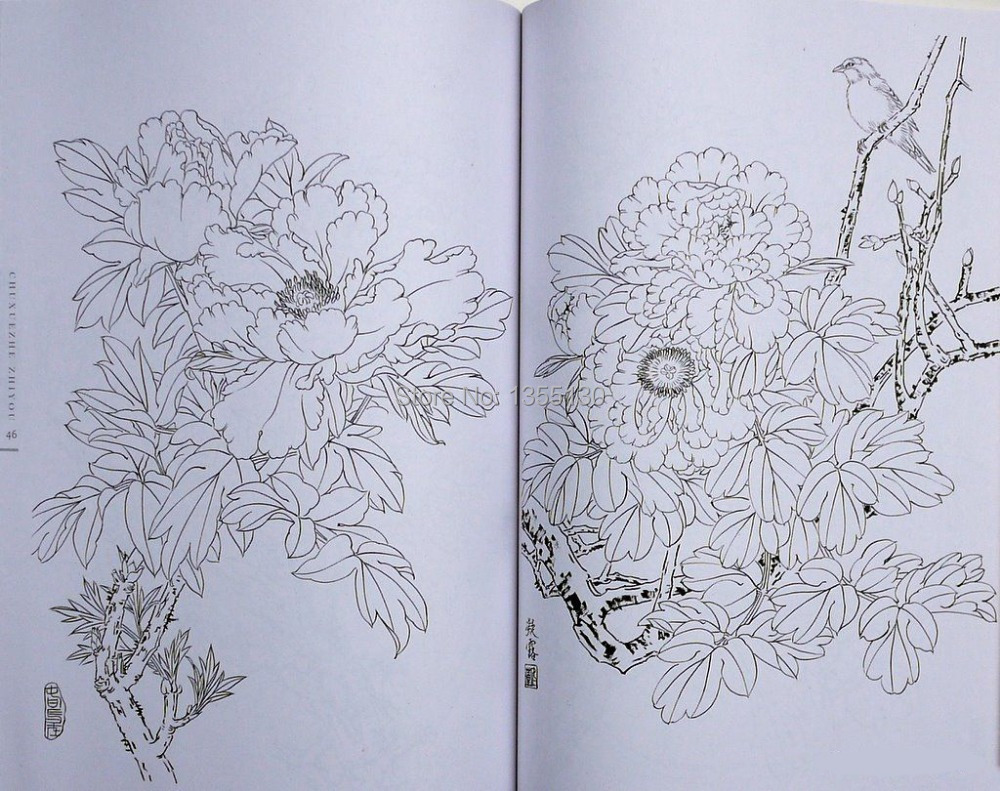 Line Art Flower Drawing : Drawing workshop journal your garden through art leaves