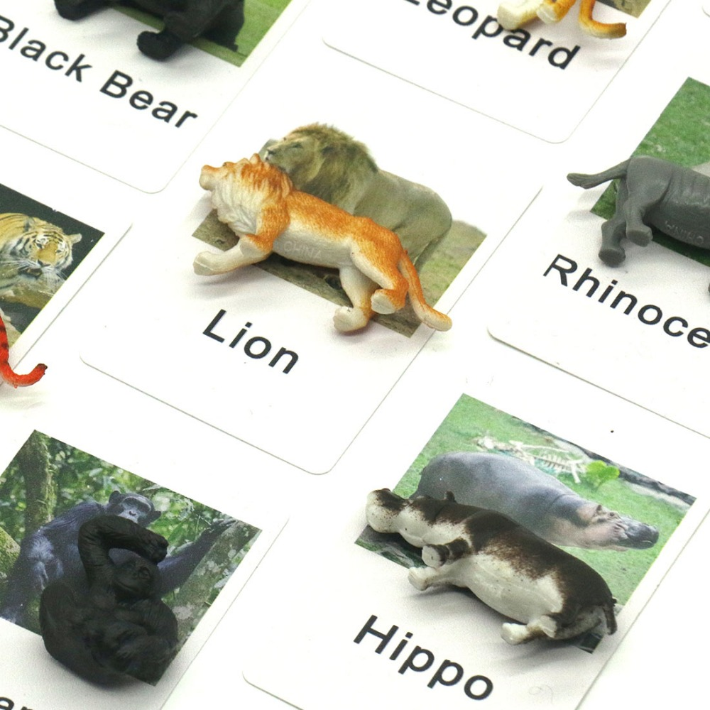 Montessori língua material cartões pvc áfrica animais correspondência brinquedos educativos para crianças juguetes motnessori ye2264h