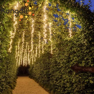 Image 2 - مصابيح led راسيموس قابلة للتوصيل بطول 4 × 2.5 متر أضواء سلسلة لحفلات الزفاف أضواء خرافية للكريسماس مصابيح led خارجية للحفلات في الحديقة زينة للفناء وشجرة الحفلات