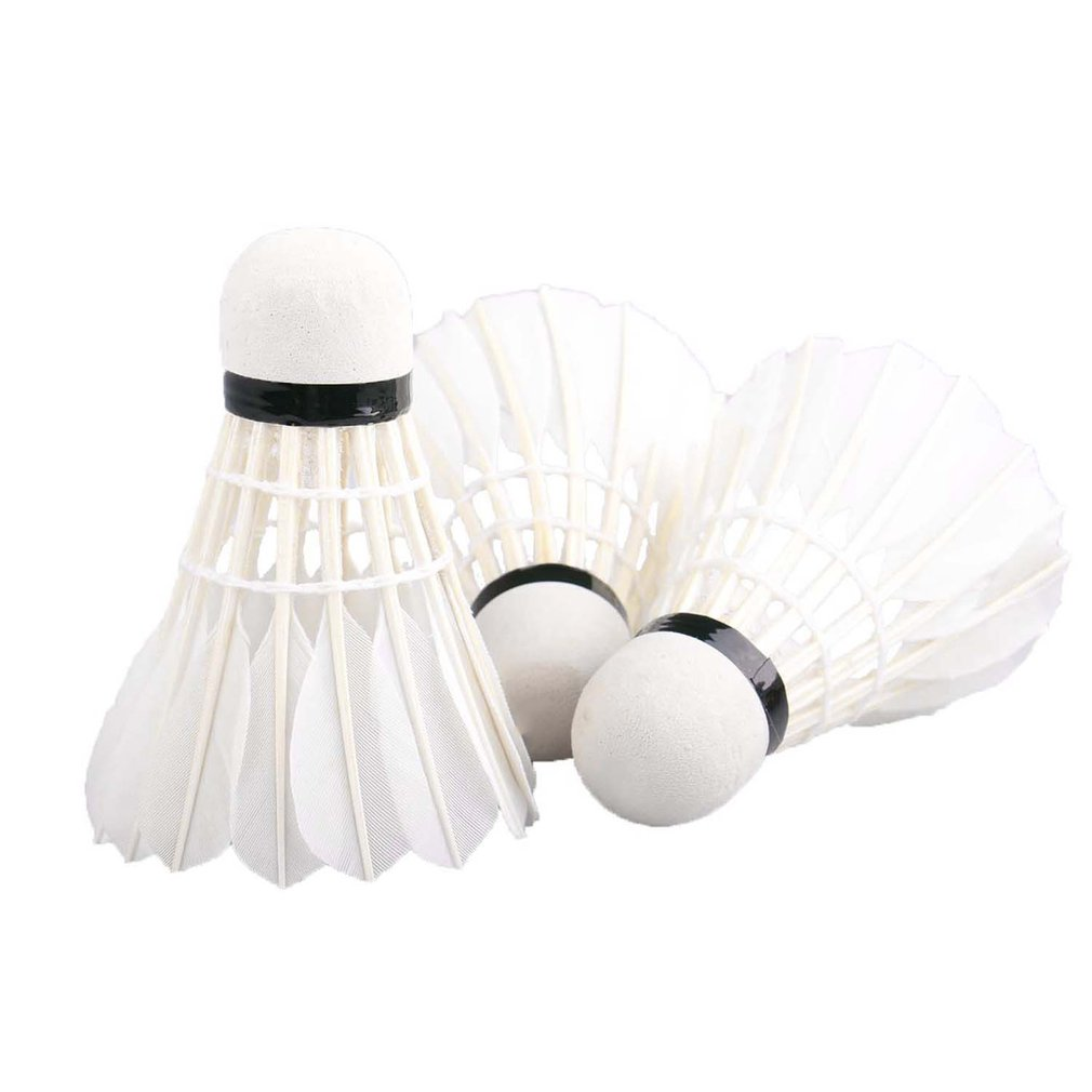 REIZ 6pcs/set Z200 Portable Training Level Badminton Shuttlecocks White Duck Feather Training Badminton Ball With A Box