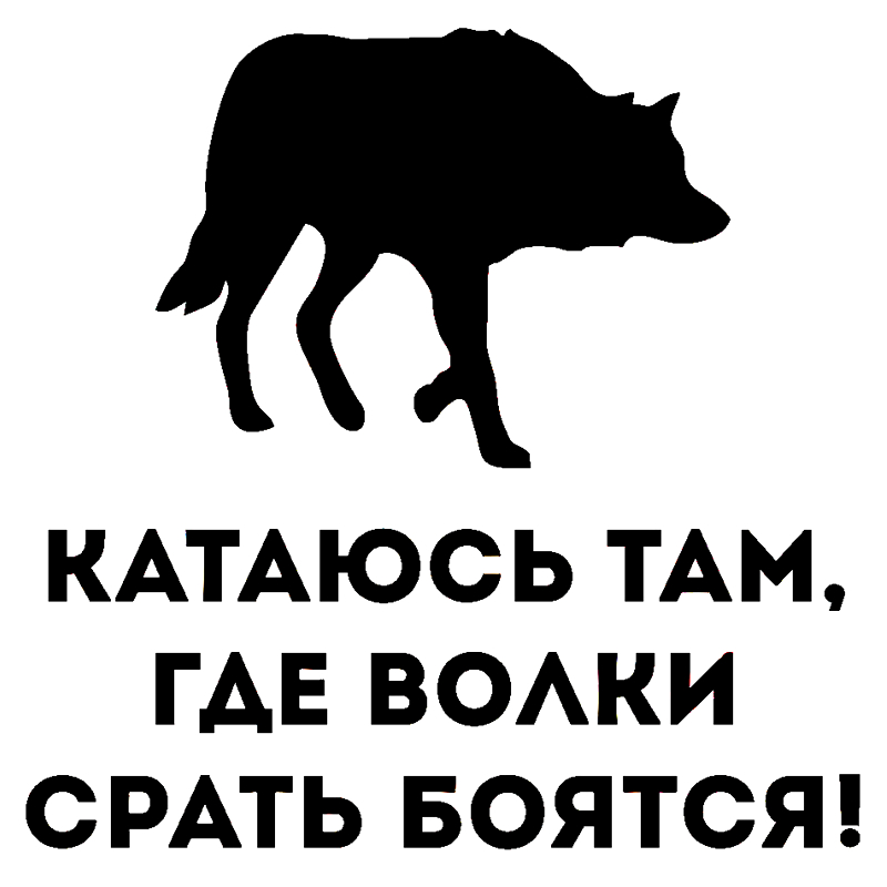 мы ездим там где волки стать боятся картинки катка находятся кафешки