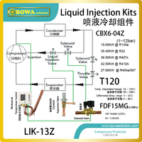 General Liquid Injection Kits Provide Easy Quick And Flexible Cooling Solution For R410a Compressors In Heat