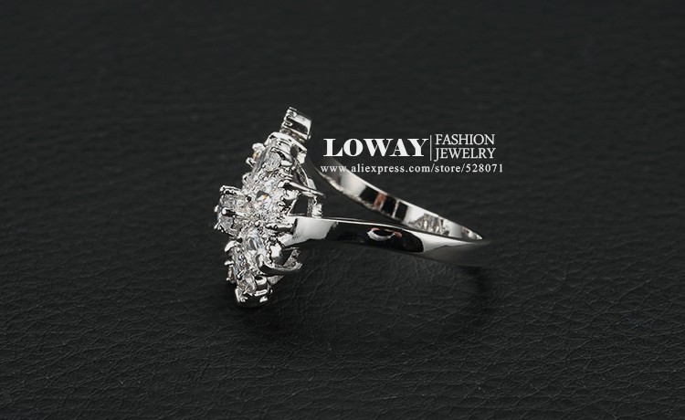 ring (1)