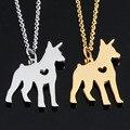 Doberman Pinscher Cão Colar de Jóias para As Mulheres 316 de Aço Inoxidável Delicado Memorial Melhores Amigos Pingente Presente do Filhote de Cachorro Do Cão de Estimação