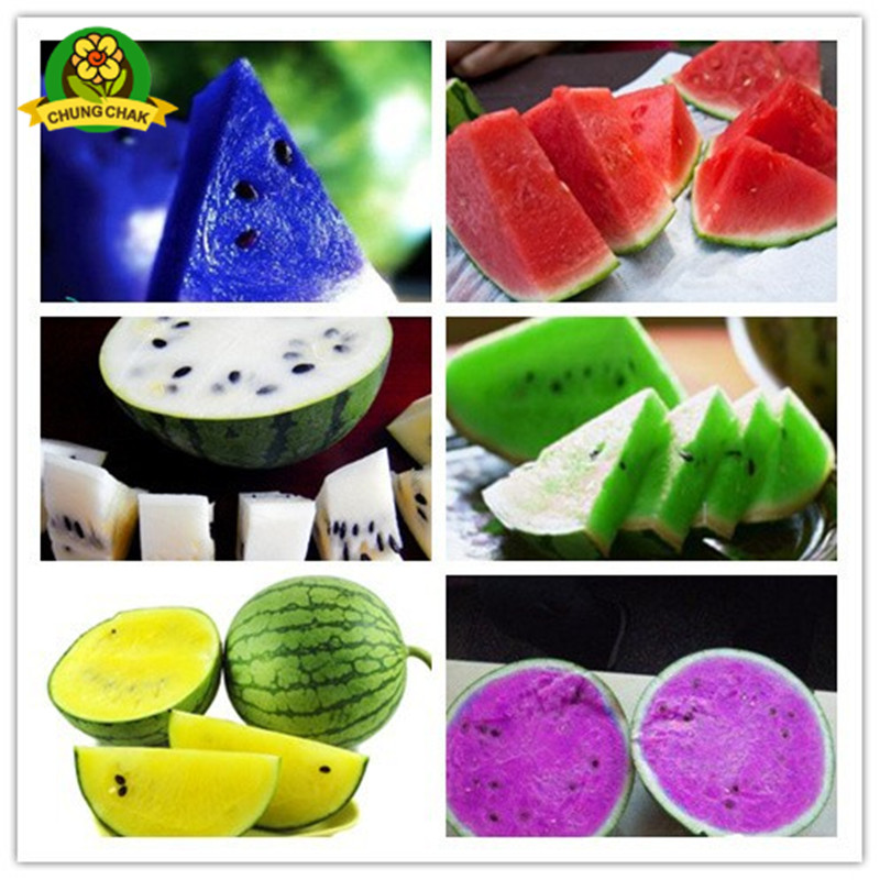 Home Garden Heirloom Watermelon Seeds 50pcs Sweet Taste ...