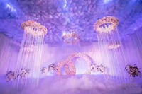 3M Tall by Diameter of 80cm tassel curtain chandelier cover Roof Decoration Wedding COLUMN 6pcs/lot