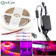 Qvvcev Led Plant Grow Strip Light lamp Waterproof 2M 3M 5M DC 12V 2A/3A Power Adapter for flower indoor greenhouse Aquarium