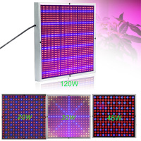 New 20W 289PCS Chips SMD Red And Blue Light LED Grow Light For Flowering Plant Spot