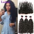 Water Wave Virgin Hair Bundles With Lace Closures Brazilian Curly Virgin Hair 8A Grade Virgin Unprocessed Human Hair Lace Fronta