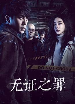 《无证之罪》2017年中国大陆犯罪,悬疑电视剧在线观看