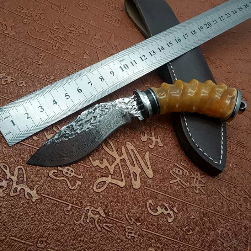 Mini Damascus steel knife fish knife EDC tool fixed blade snakewood straight knife high hardness outdoor survival camping knife цена