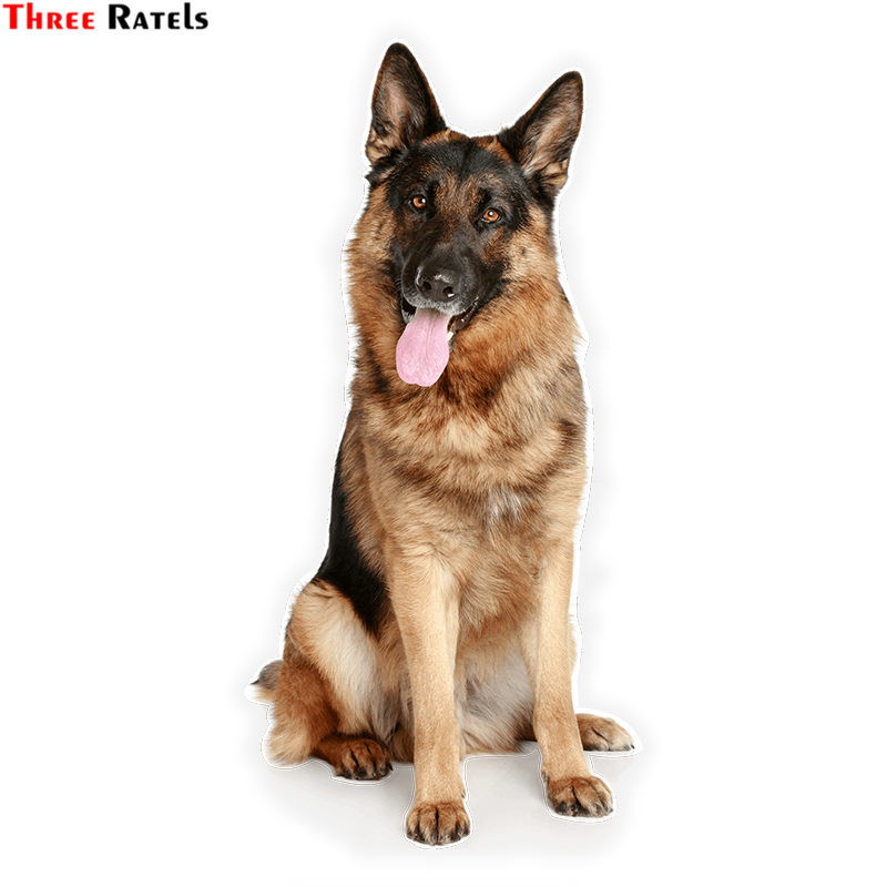 Three Ratels LCS354# 7.5x15.3cm German Shepherd Colorful Car Sticker Funny Car Stickers Styling Removable Decal