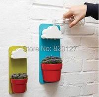 Regenachtige pot planter opknoping muurbevestiging planters met cloud vorm douche gieter