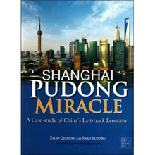 Shanghai Pudong Miracle a Case-study of China's Fast-track Economy Language English learn as long as you live-448