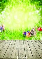 Açık Manzara Vinil İnce Fotoğraf Arka Plan gözlük Yeşil Çim tavşan çocuk Tema Fotoğraf Stüdyosu Sahne