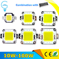 LED Chip High Power 10W 20W 30W 50W 70W 100W LED Lamp 220V Input IP65 Smart IC For DIY Outdoor LED Flood Light