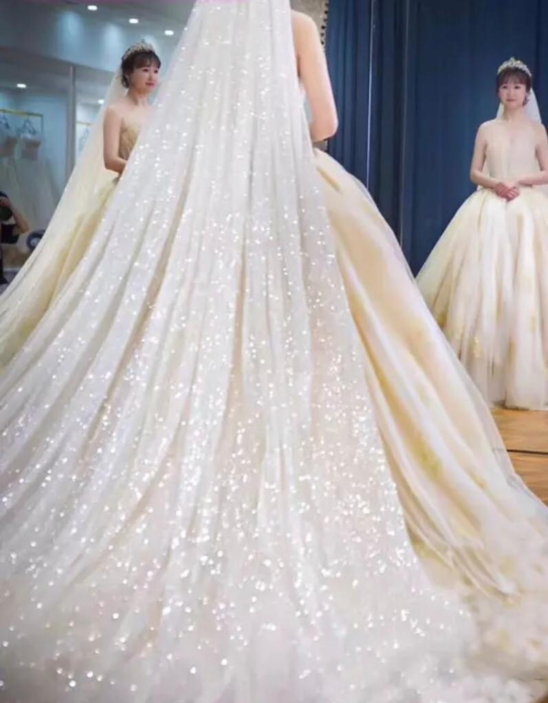Luxury Shining Sequins Spraying 5 Meters Long 3 Meters Wide Silver Sequins Wedding Veil Bridal Chapel Veil With Comb