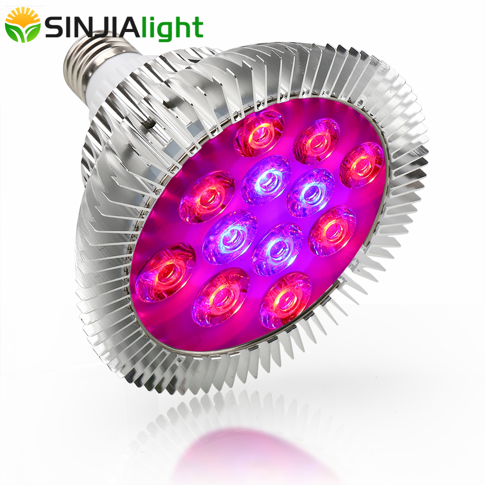 36W E27 LED Grow Light Red+Blue 12Leds Plant Growth Lamp Flower Seeds for Garden Hydroponics Grow Box LED Indoor Plants Bulbs 36W E27 LED Grow Light Red+Blue 12Leds Plant Growth Lamp Flower Seeds for Garden Hydroponics Grow Box LED Indoor Plants Bulbs