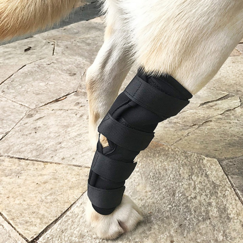 Dog Support Brace Leggings Set Pet Protector Dog Surgical Injury Fixed Knee Pads Dog Feet Cover Leg Wrap