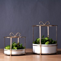 Gold Vase Modern Tabletop Gift Box Metal Flower Plant Pot Tray Pergola Garden Planting