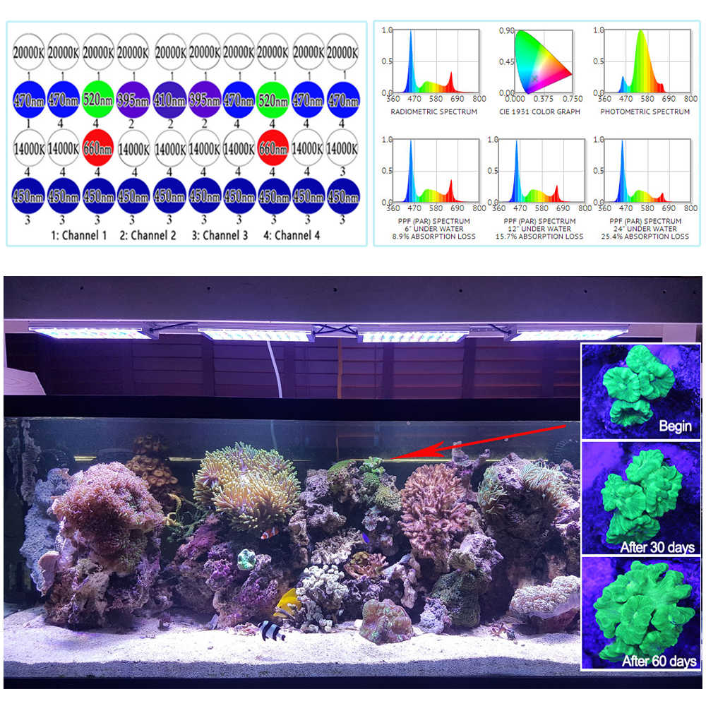 Detail Feedback Questions About Led Light For Marine Aquarium Coral