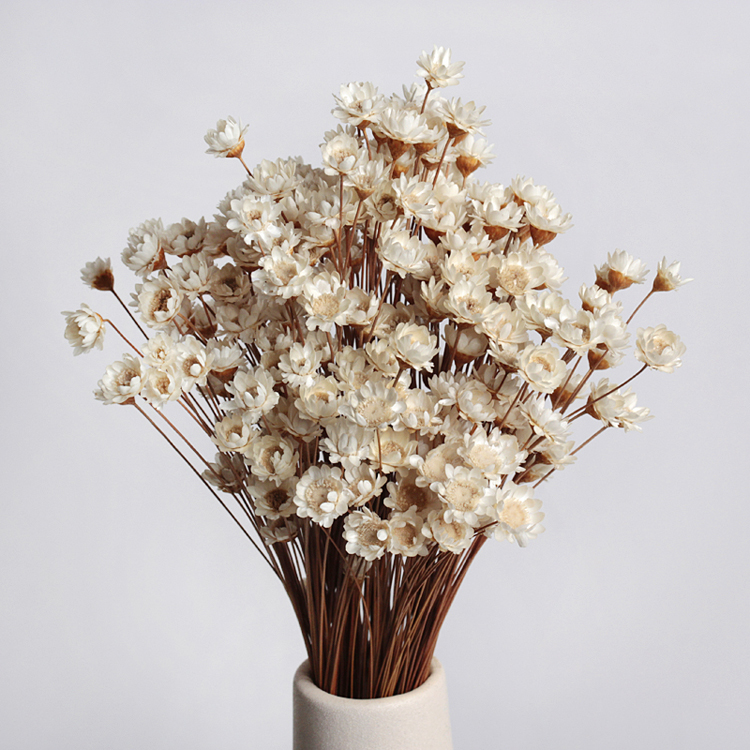 New 90pcs lot babysbreath wedding decoration dried flowers for Aana decoration wedding accessories