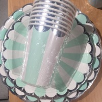 Mint Green And White Wedding Bridal Shower Reception Party Tableware Decoration Disposable Cups Plate Napkin 8