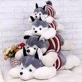 1 PC 40 cm 2015 HOT Siberian Husky mentiras Prone cachorro de brinquedo de pelúcia dia dos namorados criativo presentes para crianças