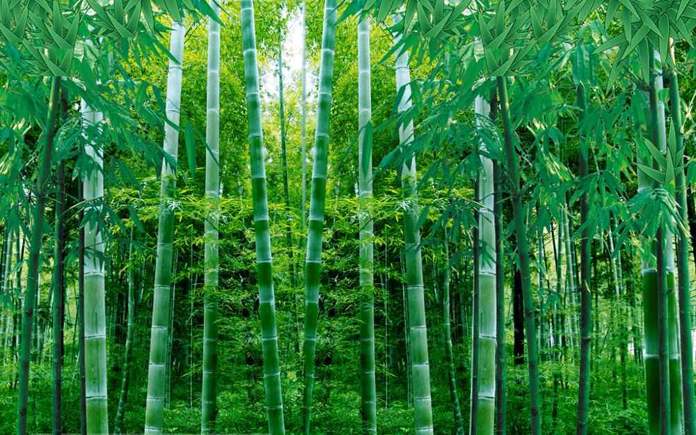 customize sound proof curtain bamboo forest curtain for the living room Bedroom girls room high quality curtain