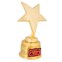 Trophy Award Trophy Vintage Decorative World Cup Trophy Replica With Star Design Alloy Handicraft For Best