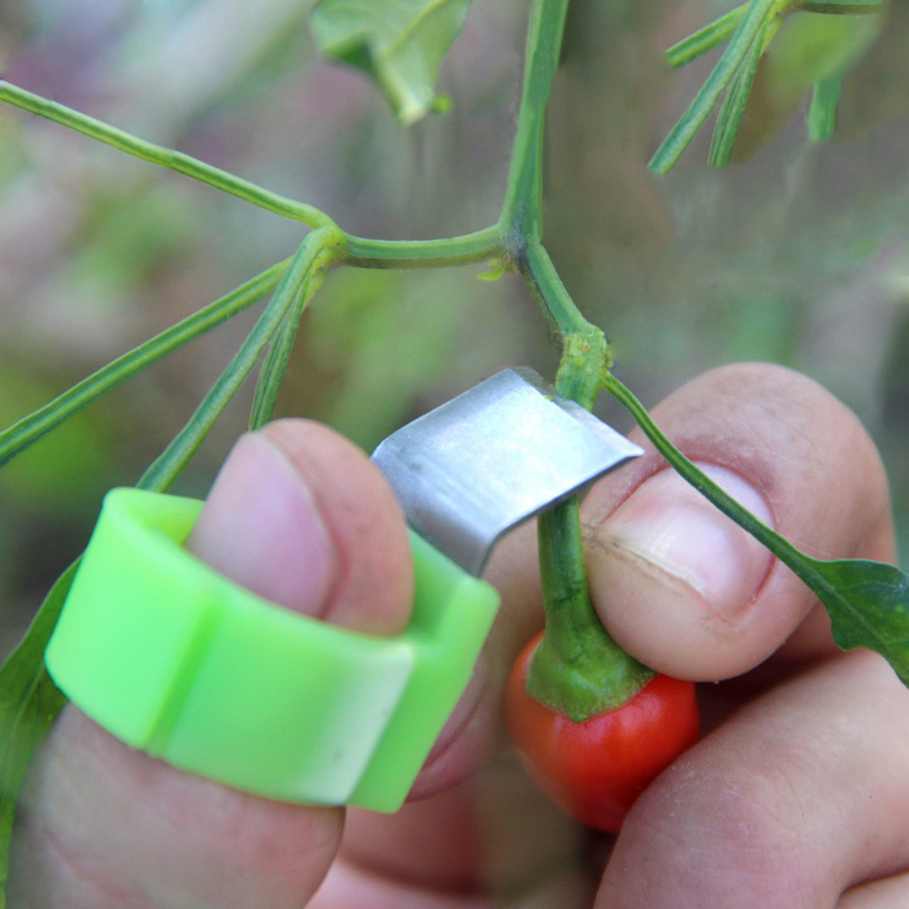 3pcs Shear Ring Picking Vegetables and Fruit Orchard Cut Tool Convenient Picking Knife Gardening Tools