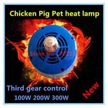 Распродажа моделей животных, теплый светильник, изоляция куриных поросят, инкубатор для домашних животных, допускается фермерское изоляционное оборудование