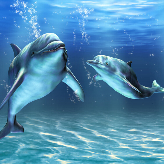 dolphin in the sea pretty view photo wallpaper for TV background washable finish wall mural for living room
