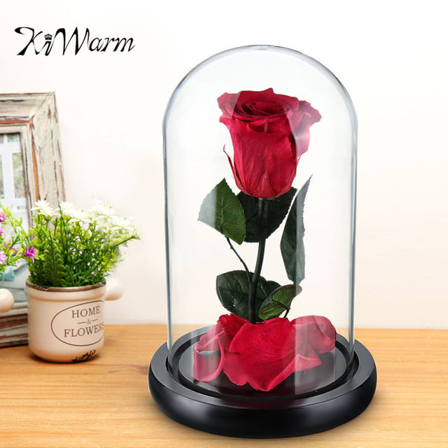Kiwarm New Beauty And The Beast Enchanted Rose Fairy Tale Belle Gl Prop Eternal Flower