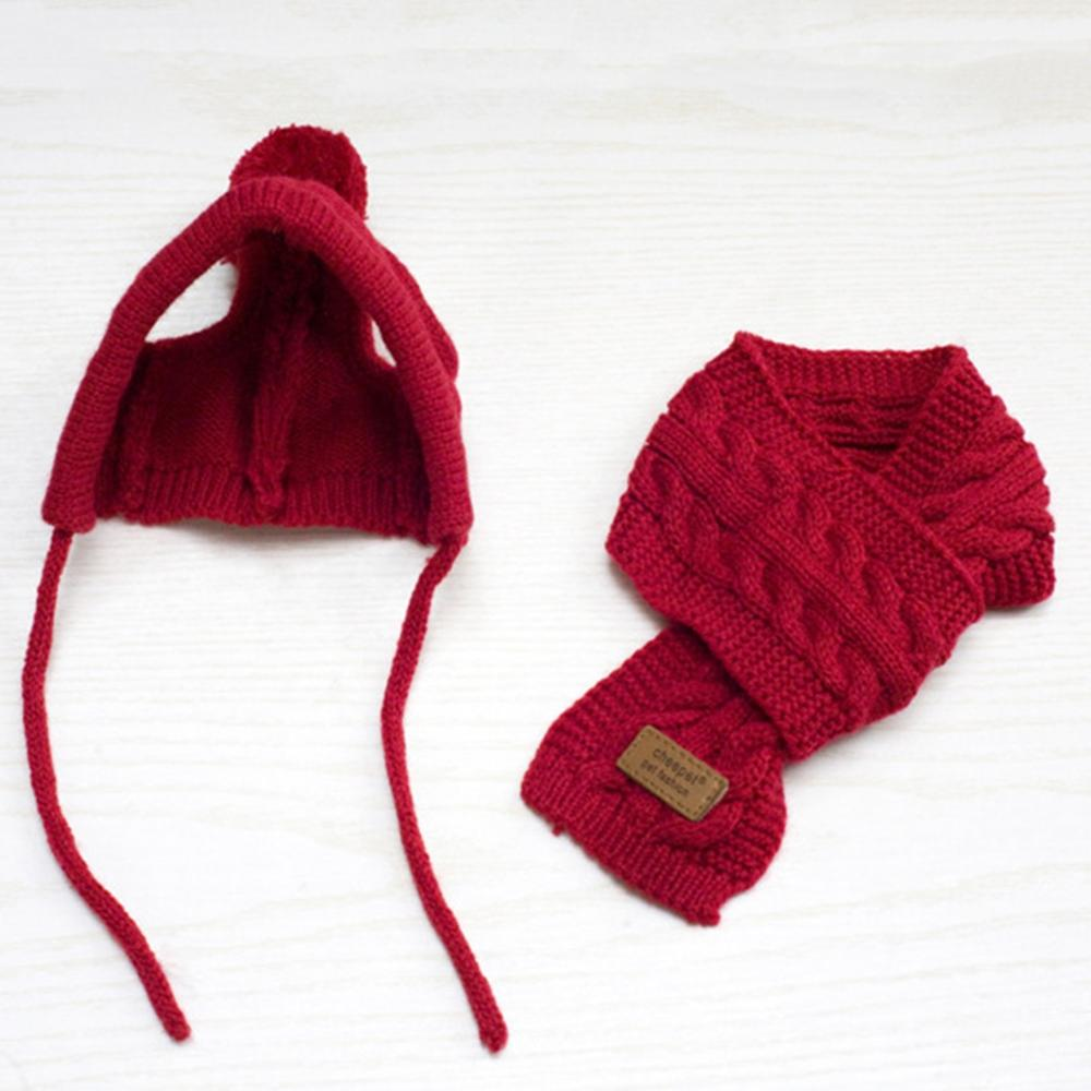 New Handmade Scarf Wool Hat and Teddy Winter Pet Accessories