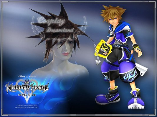 Wholesale Free Shipping Hot Selling Cheapest Halloween Kingdom Hearts Cosplay Wig Sora Wig without headband