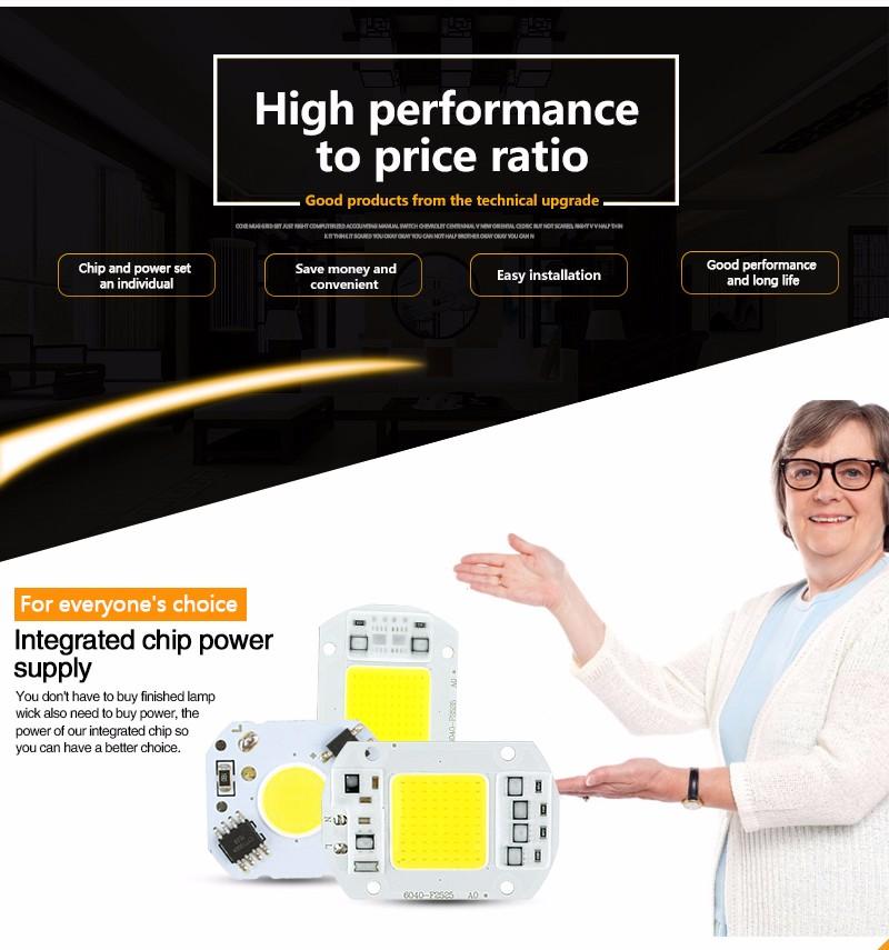 эко кот] початка лампы чип 5 вт 20 вт 30 вт 50 вт вход 220 в смарт-IC драйвера, гордость для поделки светодиодный проектор прожектор холодный белый теплый белый